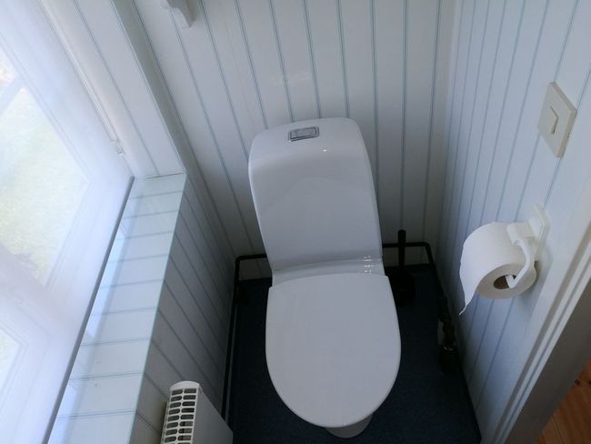 Toilet, ground floor.